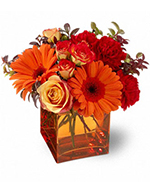 Teleflora's Sunrise Sunset